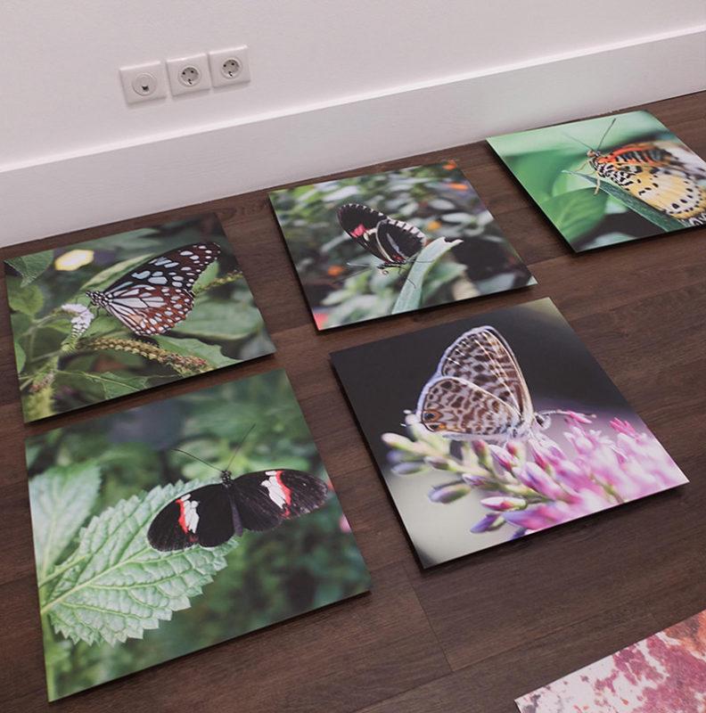 Evripides Art Gallery - Παρουσίαση: Ονειροπολήσεις (ενός Φεγγαριού)